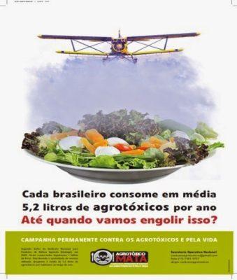 alimento-organico-saudavel-ualidade-vida-agrotoxico-quimioterapia-cancer-mama-riodejaneiro-dascoisasquetenhoaprendido