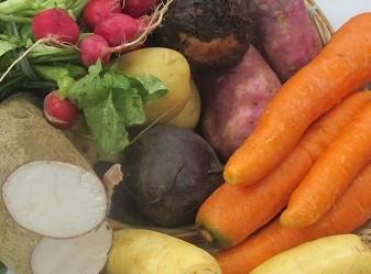 Dez alimentos alcalinizantes que irão te manter longe do câncer e de outras doenças