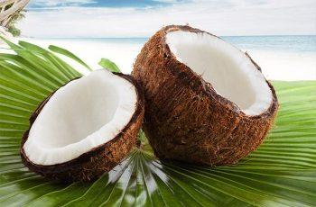 Minha Dieta Anticâncer-Coco e seus benefícios para a Saúde