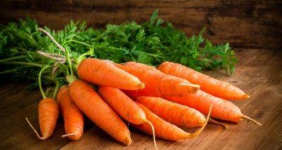 várias cenouras cruas